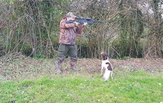 How to train a gundog