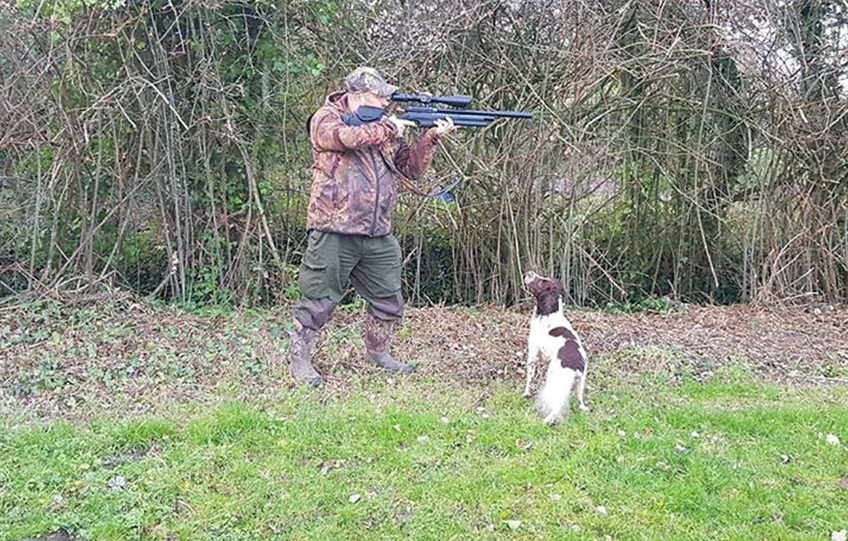 How to train a gundog